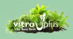 Vitro Plus BV